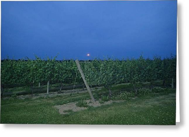 Robert Nickologianis Greeting Cards - Blue Moon Greeting Card by Robert Nickologianis