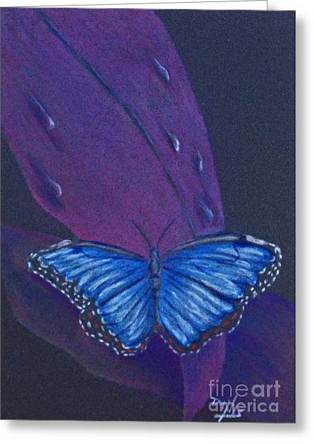Antenna Drawings Greeting Cards - Blue Morpho Butterfly Greeting Card by Terri Mills