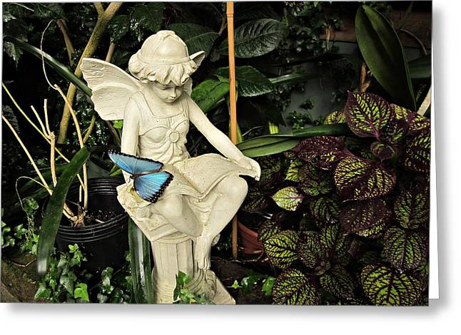 Garden Statuary Greeting Cards - Blue Morpho on Statue Greeting Card by MTBobbins Photography
