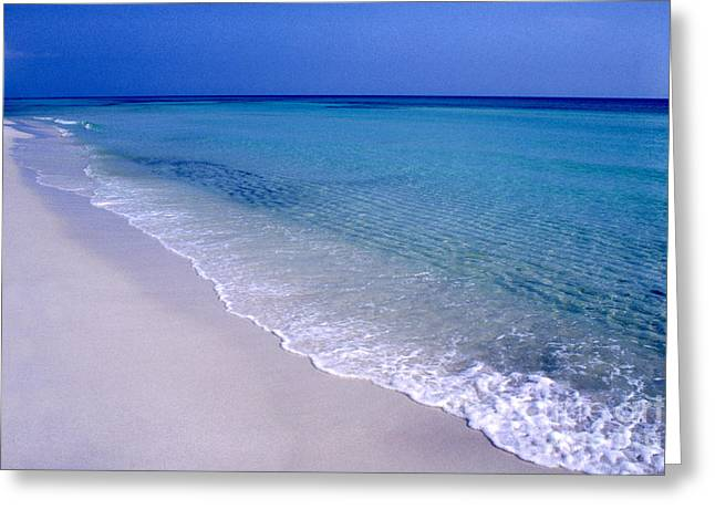 Emerald Coast Greeting Cards - Blue Mountain Beach Greeting Card by Thomas R Fletcher