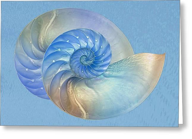 Surreal Geometric Greeting Cards - Blue Nautilus Pair - Horizontal Greeting Card by Gill Billington