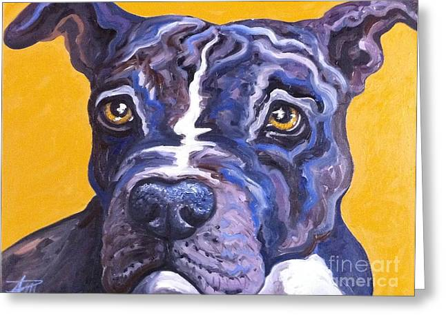 Bullie Greeting Cards - Blue Nose Pitbull Greeting Card by Ana Marusich-Zanor