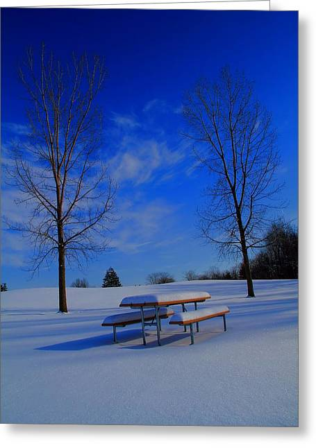 Snowy Day Greeting Cards - Blue On A Snowy Day Greeting Card by Dan Sproul