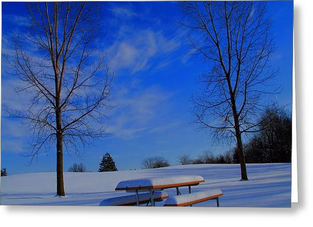 Blue On A Snowy Day Greeting Card by Dan Sproul