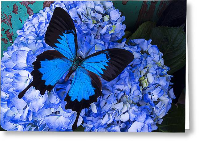 Antenna Greeting Cards - Blue On Blue Greeting Card by Garry Gay