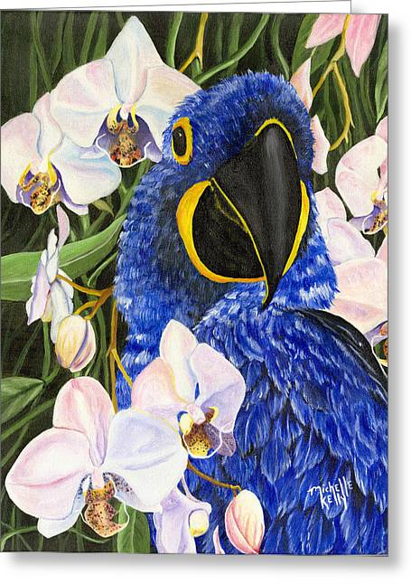 Michelle Kelly Greeting Cards - Blue Parrot  Greeting Card by Michelle Kelly