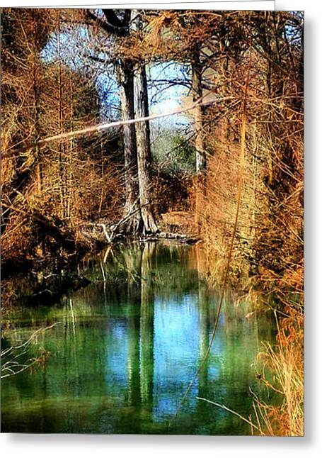 Hamilton Pool Greeting Cards - Blue Pool in Autumn Greeting Card by CJ Anderson