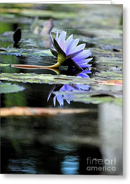 Water Garden Greeting Cards - Blue Purple Dreams II Greeting Card by Suzanne Gaff