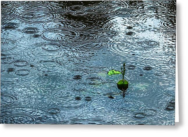 Blue Rain - Featured 3 Greeting Card by Alexander Senin