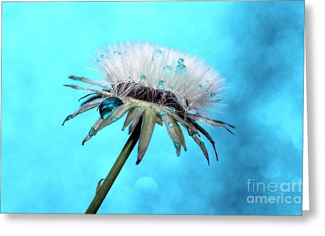 Blue Rain Greeting Card by Krissy Katsimbras