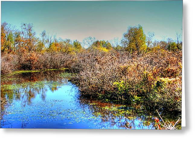 Stagnant Greeting Cards - Blue Reflection Greeting Card by Ester  Rogers