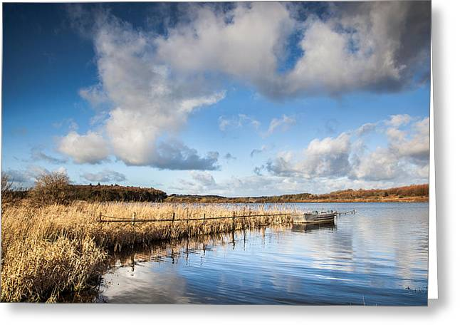 Blue Reflections Greeting Card by Christine Smart