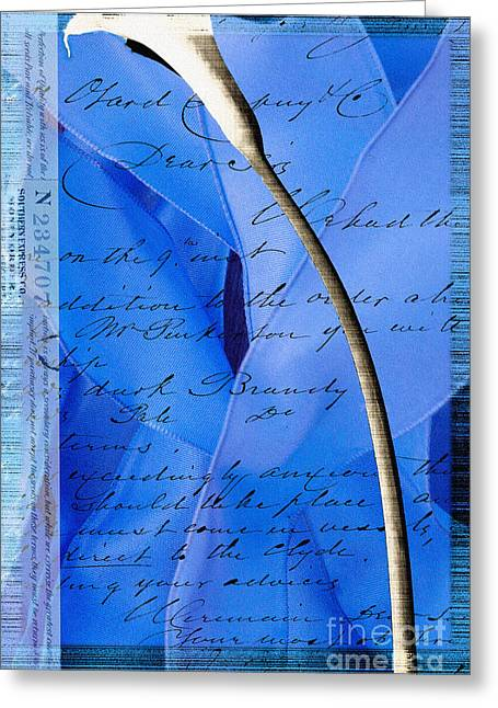 Love Letter Greeting Cards - Blue Ribbon Calla Lilly Greeting Card by Anahi DeCanio