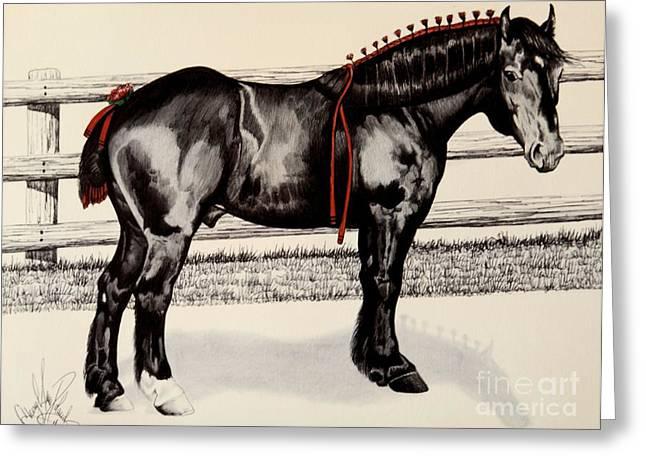 Horse Drawing Greeting Cards - Blue Ribbon Farm Napoleon - Percheron Stallion Greeting Card by Cheryl Poland