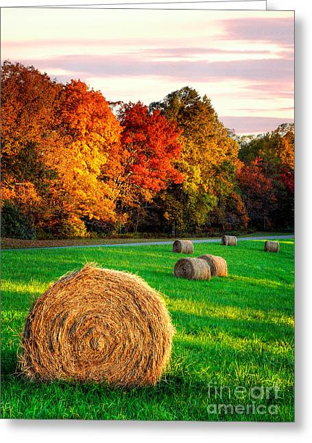 Blue Ridge - Fall Colors Autumn Colorful Trees And Hay Bales I Greeting Card by Dan Carmichael