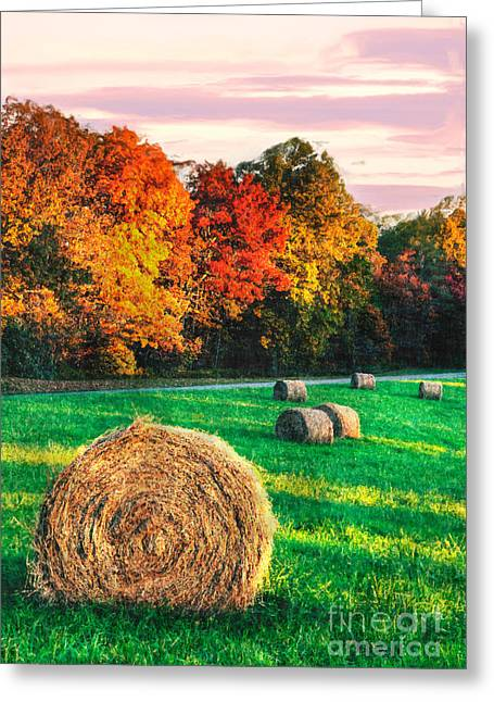 Blue Ridge - Fall Colors Autumn Colorful Trees And Hay Bales II Greeting Card by Dan Carmichael