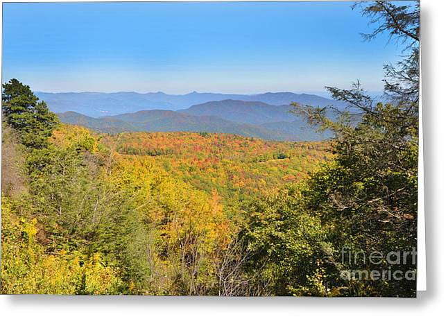 Dogwood Silhouette Greeting Cards - Blue Ridge Mountains Greeting Card by Stuart Mcdaniel