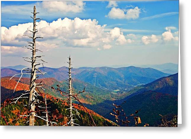 Susan Leggett Greeting Cards - Blue Ridge Parkway Art-Trees and Mountains Greeting Card by Susan Leggett