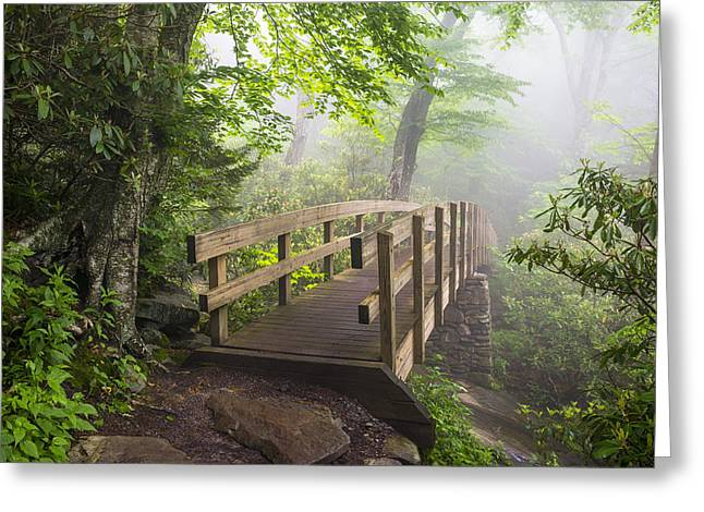 Western North Carolina Greeting Cards - Blue Ridge Parkway Hiking Tanawha Trail Rough Ridge Greeting Card by Dave Allen