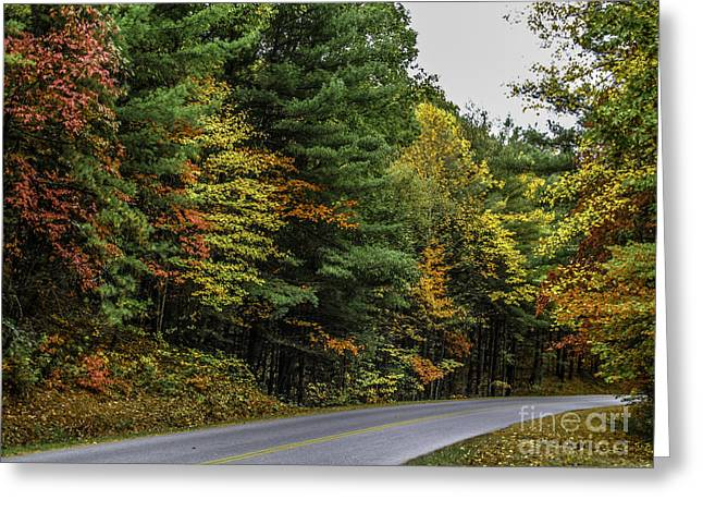 Roadway Greeting Cards - Blue Ridge Parkway Greeting Card by Scott Moore
