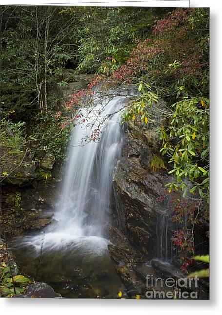 Orange County North Carolina Greeting Cards - Blue Ridge Parkway Waterfall Western North Carolina Greeting Card by Reid Callaway