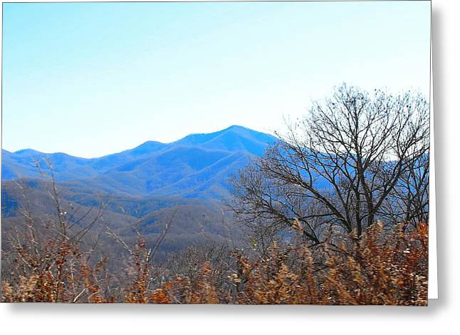 Temperature Greeting Cards - Blue Ridge Pkwy Thru the Trees 3 Greeting Card by Cathy Lindsey