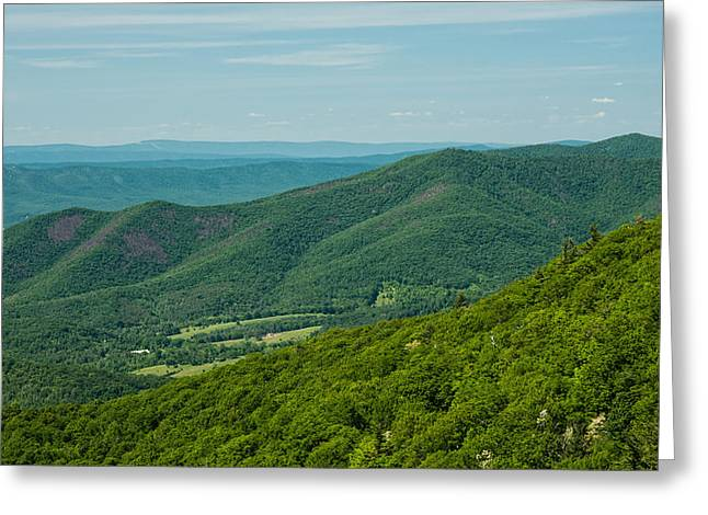 Shenandoah National Park Greeting Cards - Blue Ridge Vista Greeting Card by Lara Ellis