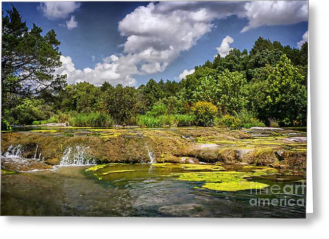 Tamyra Ayles Greeting Cards - Blue River Water Falls Greeting Card by Tamyra Ayles