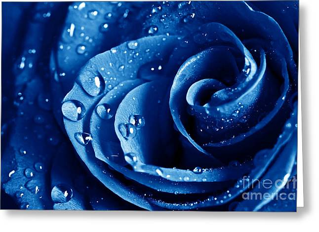 Philadelphia Pyrography Greeting Cards - Blue Roses Greeting Card by Boon Mee