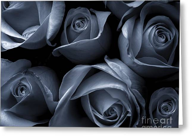 Contemporary Abstract Photographs Greeting Cards - Blue Roses Greeting Card by Diane Diederich