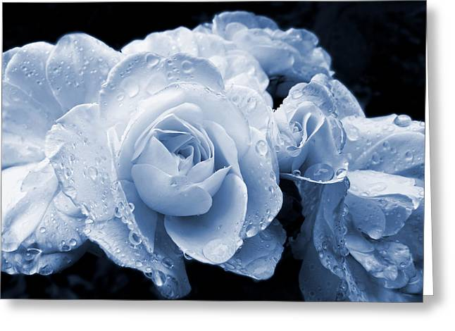 Blue Roses with Raindrops Greeting Card by Jennie Marie Schell