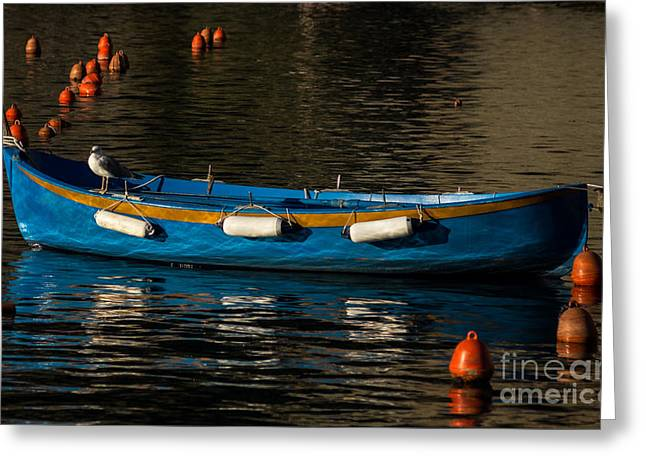 Charly Greeting Cards - Blue Rowboat and a Gull Greeting Card by Prints of Italy