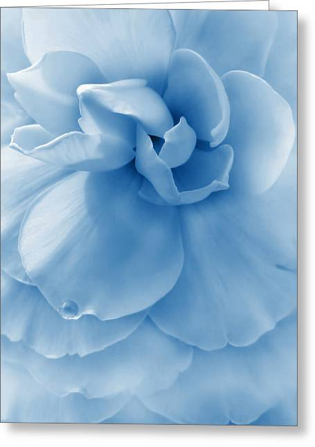 Blue Begonias Greeting Cards - Blue Ruffled Begonia Flower Greeting Card by Jennie Marie Schell