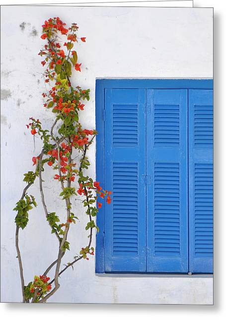 Blue Shuttered Greeting Card by Kathy Schumann