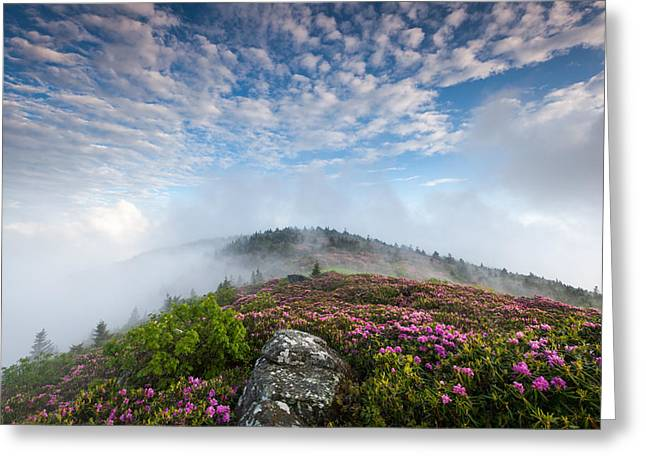 Tn Greeting Cards - Blue Skies Above Catawba Rhododendron in the Roan Mountain Highlands Greeting Card by Mark VanDyke