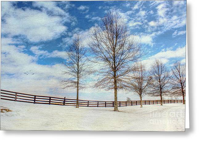 Winter Scenes Rural Scenes Greeting Cards - Blue Skies and Snow Greeting Card by Darren Fisher