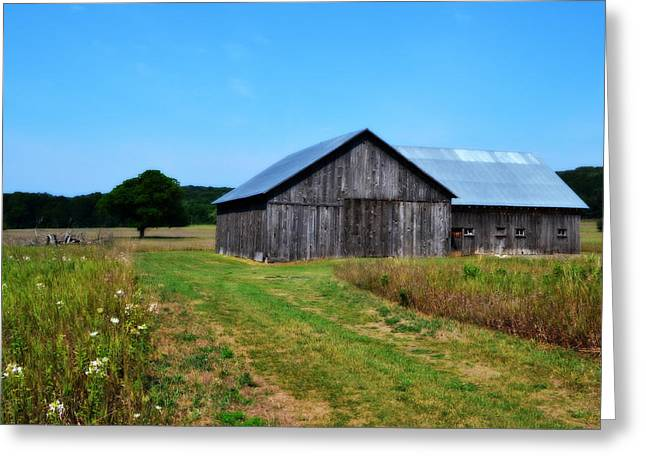 Outbuilding Greeting Cards - Blue Skies  Greeting Card by Michelle Calkins