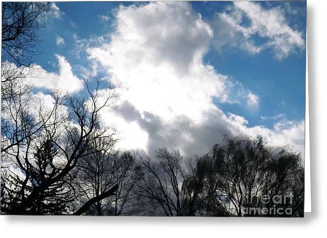 Unique Greeting Cards - Blue Skies of Autumn Greeting Card by Robyn King