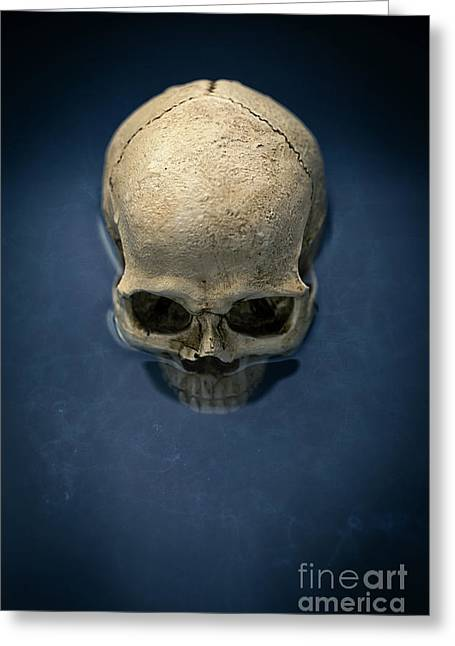 Gloom Greeting Cards - Blue Skull Greeting Card by Edward Fielding