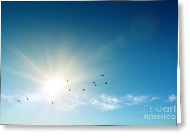 Heavenly Sunrise Greeting Cards - Blue Sky Greeting Card by Carlos Caetano