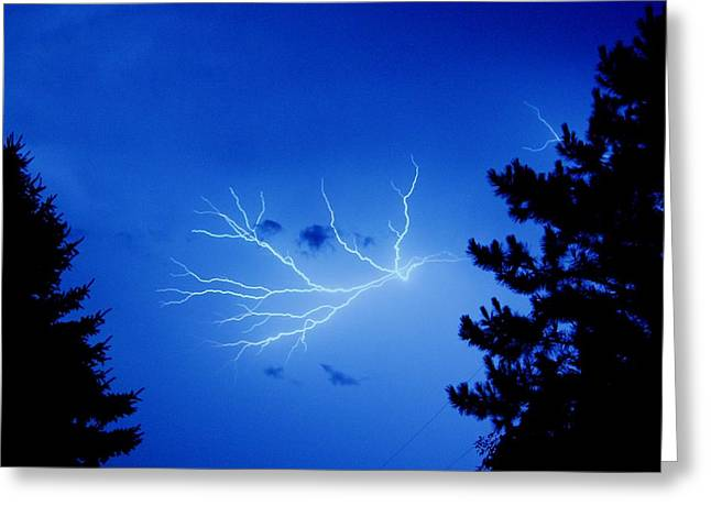 Diane Reed Greeting Cards - Blue Skylight Greeting Card by Diane Reed