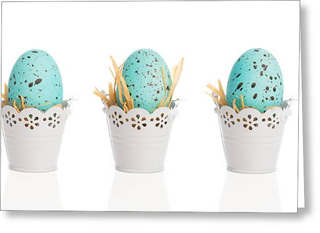 Easter Egg Greeting Cards - Blue Speckled Eggs Greeting Card by Amanda And Christopher Elwell