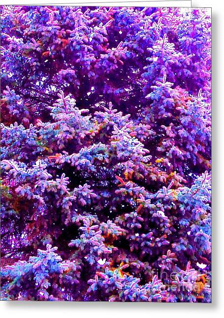 Blue Spruce In The Snow Greeting Card by Ann Johndro-Collins