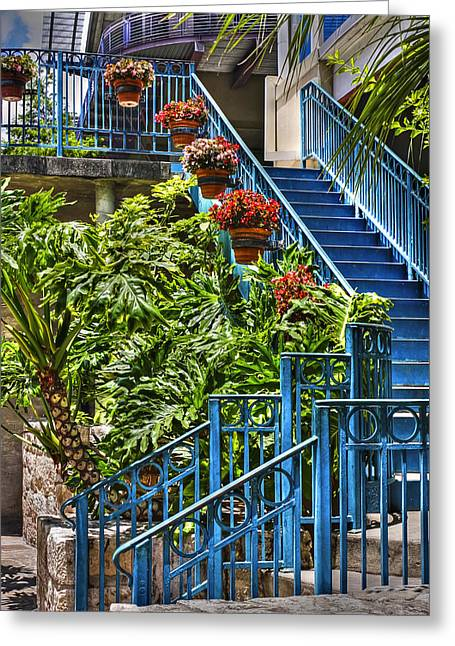 Hanging Planter Greeting Cards - Blue Stairs and Flowers Greeting Card by Tony  Colvin