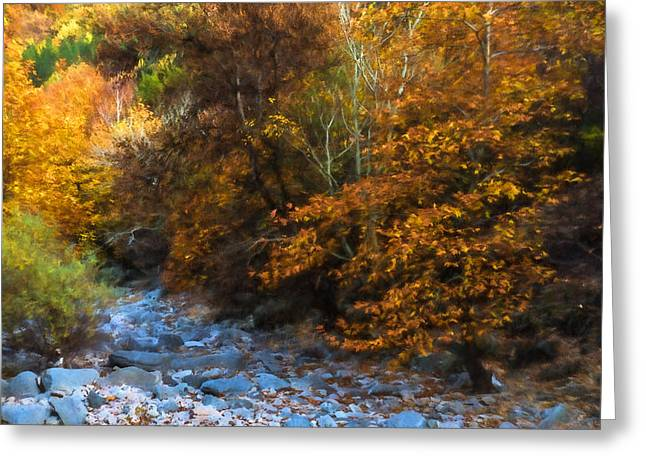 Stream Digital Greeting Cards - Blue Stones Yellow Leaves - a Dry River Impressions Greeting Card by Georgia Mizuleva