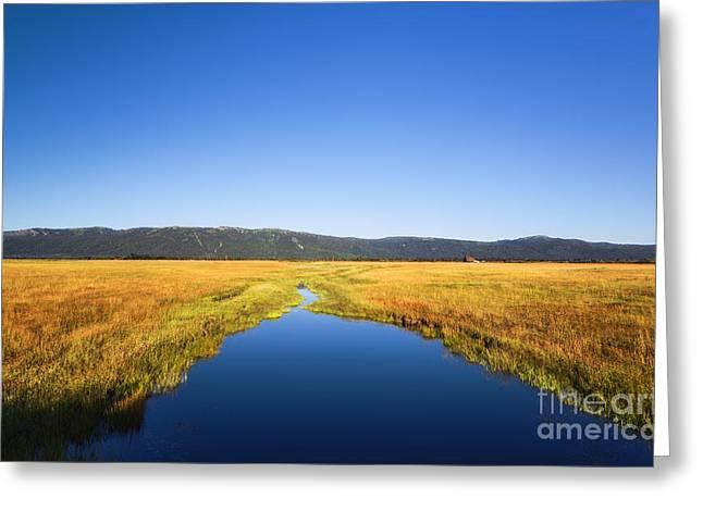 Scenic Idaho Greeting Cards - Blue stream in Cascade Idaho Greeting Card by Vishwanath Bhat