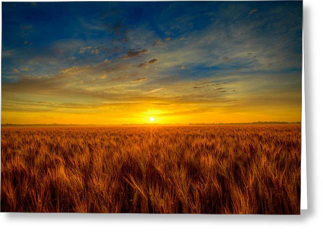 Sunrise Greeting Cards - Blue sunrise Greeting Card by  Caleb McGinn