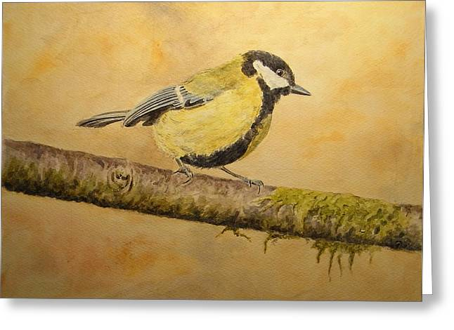 Wildlife Watercolor Greeting Cards - Blue tit Greeting Card by Juan  Bosco