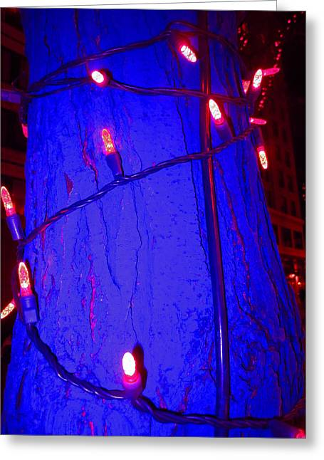 Colbalt Blue Greeting Cards - Blue Tree Red Lights Greeting Card by Kym Backland