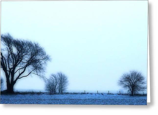 Blue Treeline Greeting Card by Kimberleigh Ladd